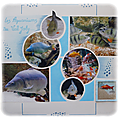 Les aquariums du val joly