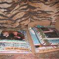 mini almbum carton emballage noel 2008 013