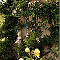 Windows-Live-Writer/jardin_D005/DSCF3912_thumb