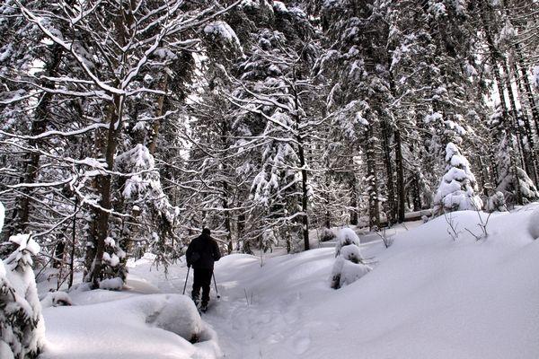 les_joies_de_la_neige_1
