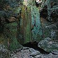 Coop: 1ère sortie mensuelle à roquefort les cascades (09)