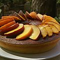 Gâteau moelleux pêches abricots