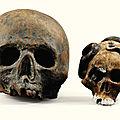 Crâne en biscuit polychrome, Europe du Nord, fin XVIIIe-début XIXe siècle, et crâne en terre cuite patinée, probablement XVIIIe siècle