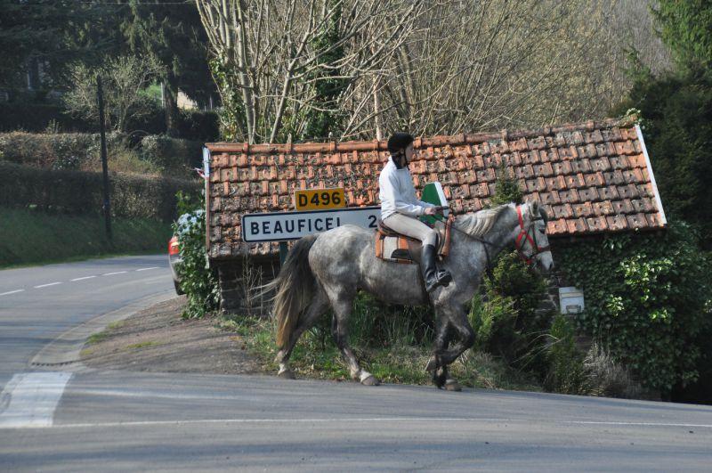 La Balade du Jambon - Balade à cheval dans le mortainais (33)