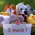 10 petits doudous