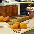 Comment donner un goût extra à votre confiture d'abricots