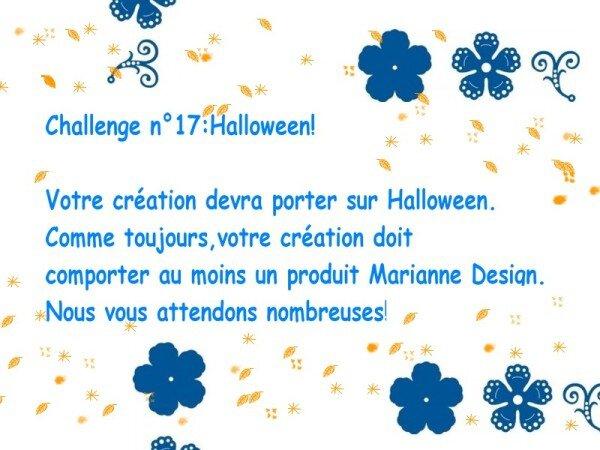 challenge17