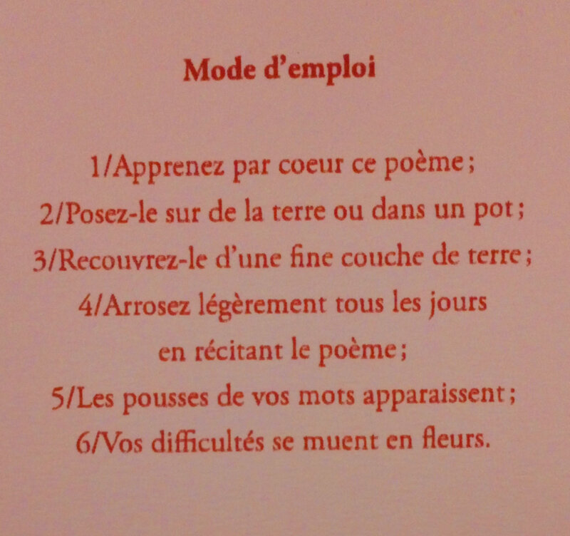 Rimbaud_Ma boheme_Poeme a planter-1