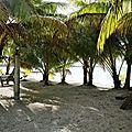 TAHITI 2017 Atoll de TIKEHAU (3)