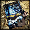 Effondrements, de guy morant