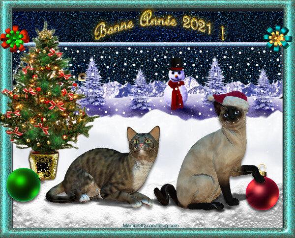 2021-carte-bonne-année-chats-décorations-Noel