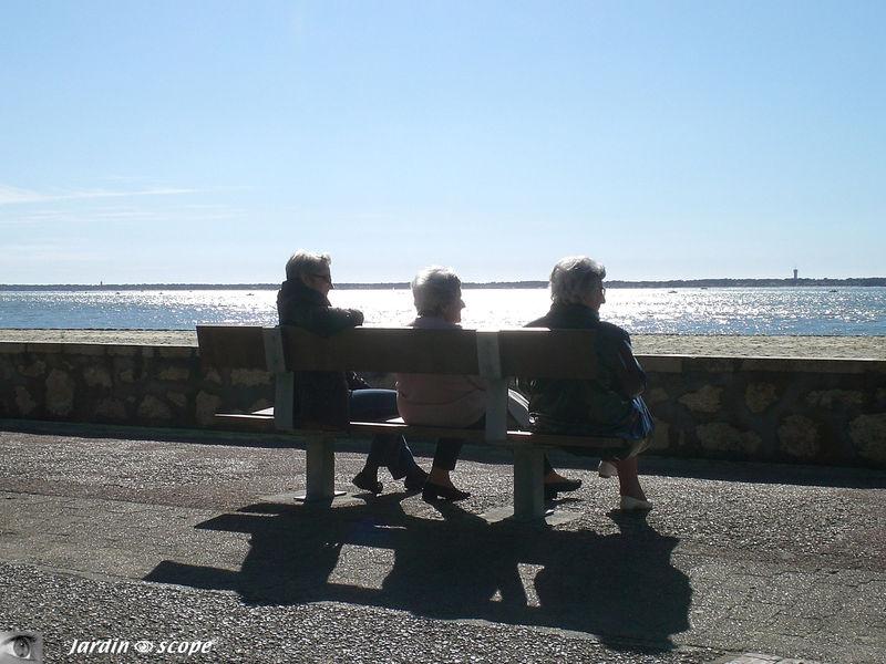 Banc face à la mer - Parc Péreire à Arcachon