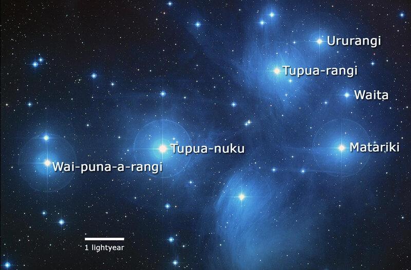 maori star