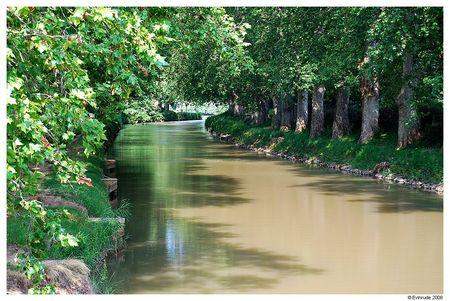 Evin_Canal_Midi_2008_01