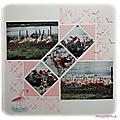 Les flamants roses de pairi daiza