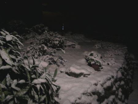 neige_005