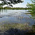 Lac d'Agès 29041664