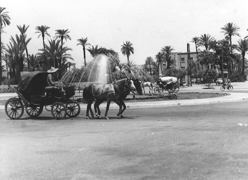 Caleches-1955_o