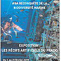 Exposition : les récifs artificiels du prado - marseille - exhibition: the artificial reefs of the prado