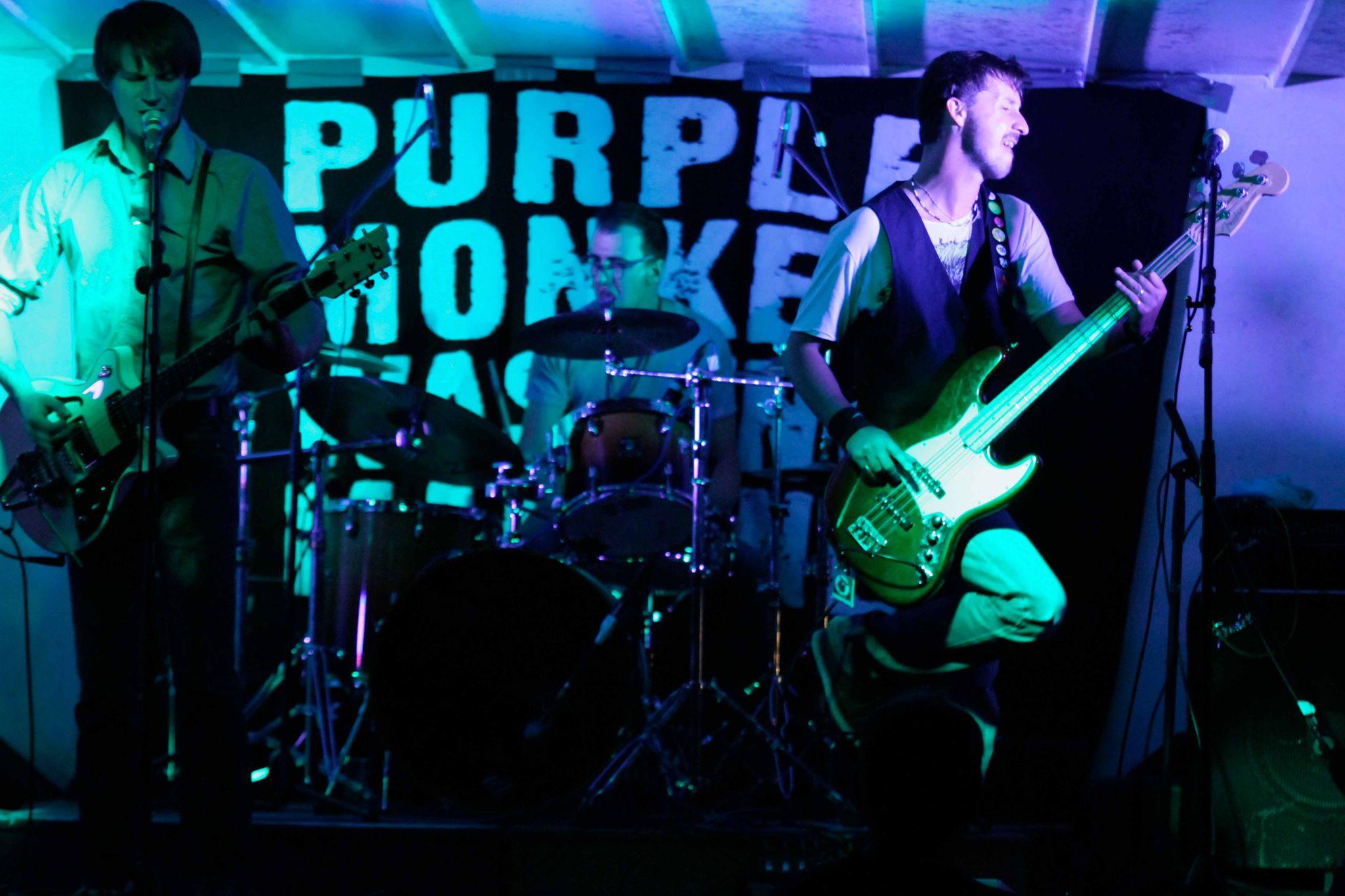 PurpleMonkeyWashingMachine-DTGFestival-2012-47