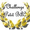 Challenge petit bac 2011