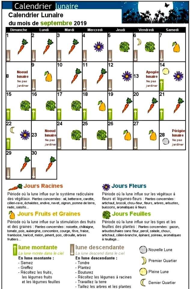 Calendrier Jardinage Lunaire 2019.Jardinage Calendrier Lunaire Du Mois De Septembre Le