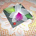 Ardoise orchidée
