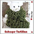 Echarpe tortillon