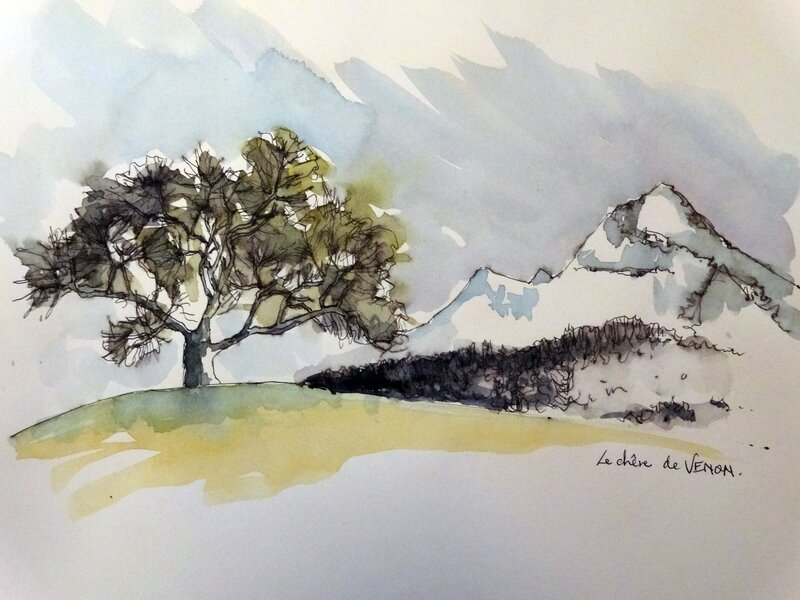 le chêne de Venon
