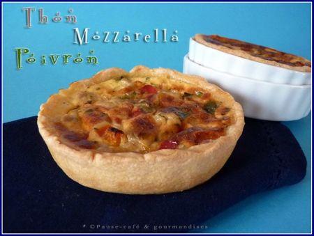 quiche thon poivrons mozzarella (20)