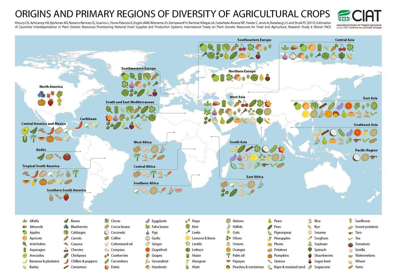 Common crops and where they originated from