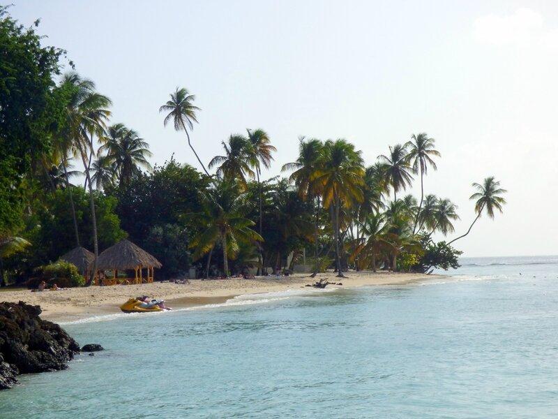 26 01 16 (Tobago)170