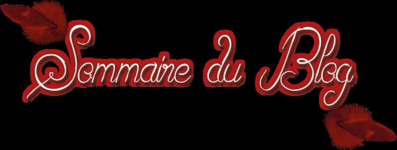 Sommaire-du-blog