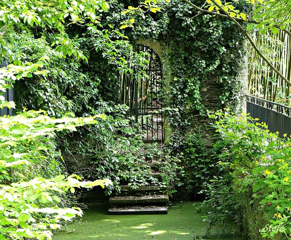 vert arboretum (15)
