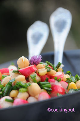 Salade_pois_chiches_radis_plat