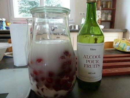 fruits à l'eau de vie (2)
