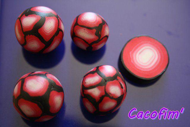 caco25 099