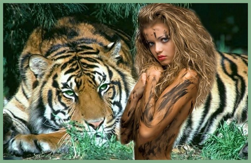 tigre yeux verts