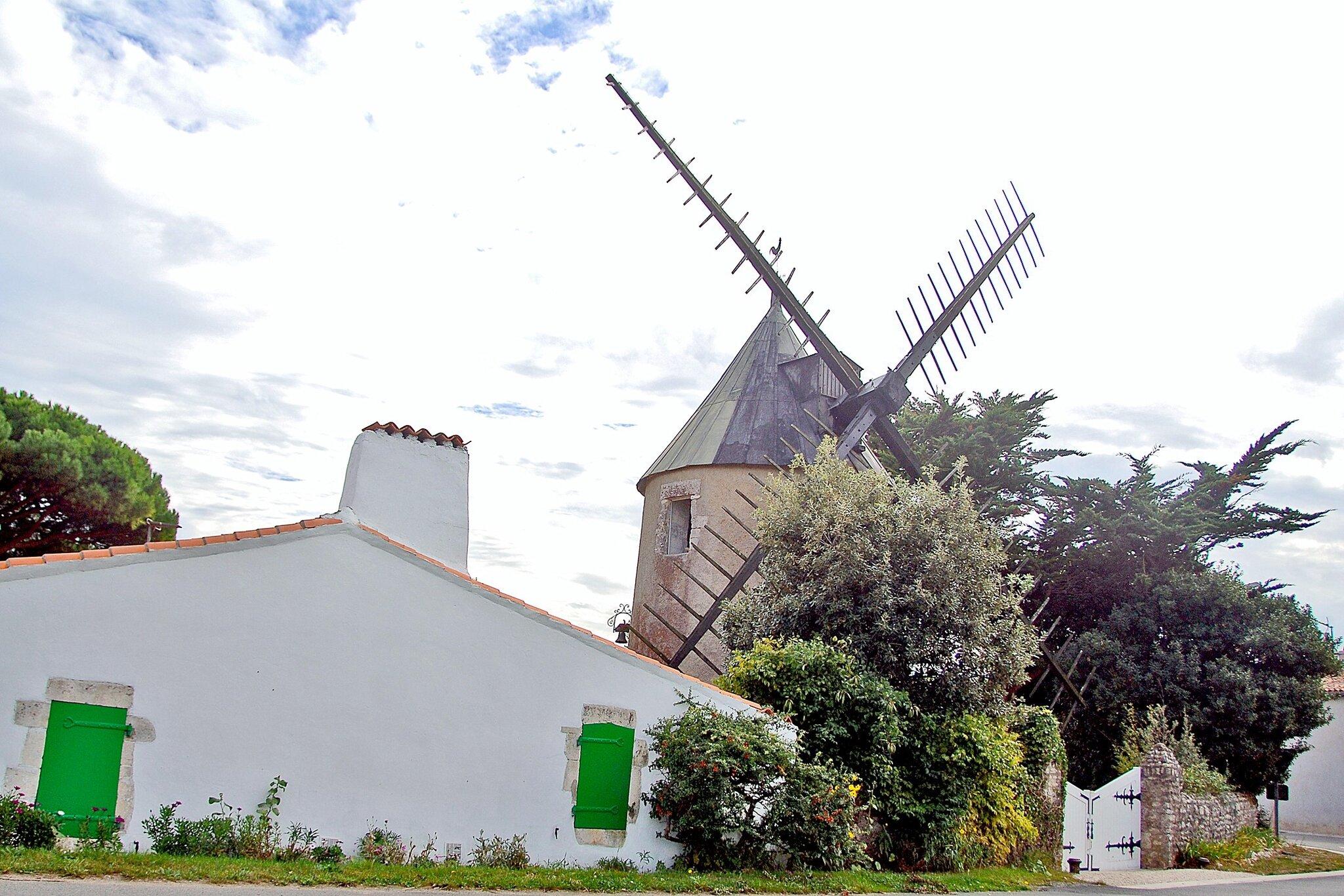 Le moulin de Sainte Marie de Ré.