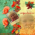 Mes pages coquelicots