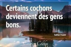 Citation Gaétan Faucer