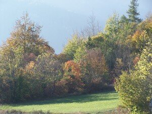 Orci_res_automne_2007_012
