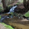 2009 04 20 Un petit ruisseau à côté du Lignon vers Mars en Ardèche en bordure de la Haute-Loire (6)
