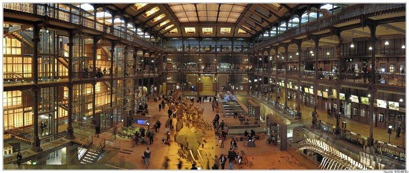 DSC1727-1733-Grande_Galerie_de_l_Evolution _Museum_national_d_Histoire_naturelle
