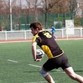 RCP15-RCT-R29