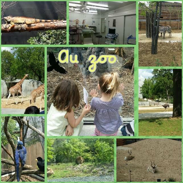 zoo-de-vincennes