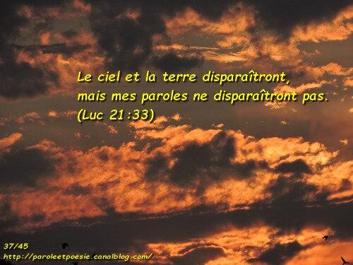 Luc 21:33 - Verset d'Or Pur - 37/45 - VOIS... ET VIENS