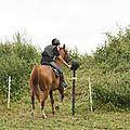 équitation de pleine nature - rallye équestre (139)