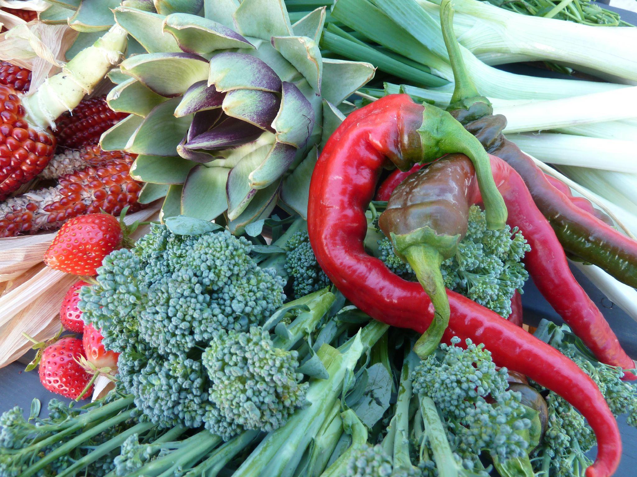 brocolis, piments et artichaut - - www.passionpotager.canalblog.com