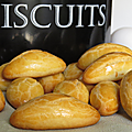 Biscuits aux oeufs